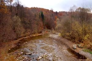 rzeka Wisłok płynąca przez Puławy