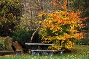 kącik wypoczynkowy w ogrodzie